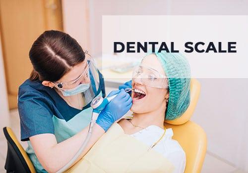 dental-scale